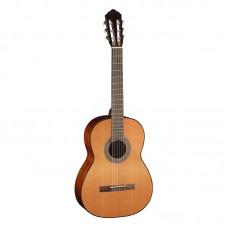 قیمت خرید فروش گیتار کلاسیک Cort AC100 SG
