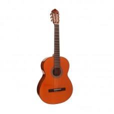 قیمت خرید فروش گیتار کلاسیک Cort AC100DX YT