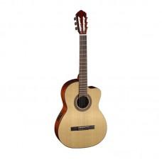 قیمت خرید فروش گیتار کلاسیک Cort AC120CE OPW