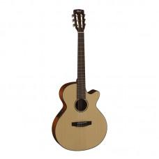 قیمت خرید فروش گیتار کلاسیک Cort CEC3 NS