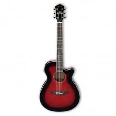 قیمت خرید فروش گیتار آکوستیک Ibanez AEG8E TRS