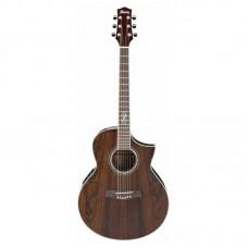 قیمت خرید فروش گیتار آکوستیک Ibanez EW20WNE NT