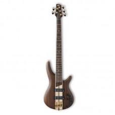 قیمت خرید فروش گیتار باس Ibanez SR1805 NTF